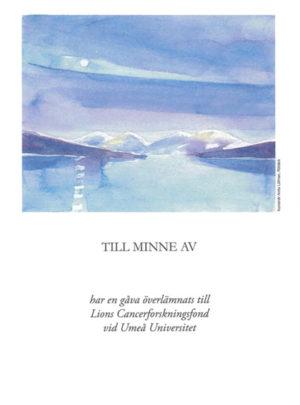 Minnesgåva_old